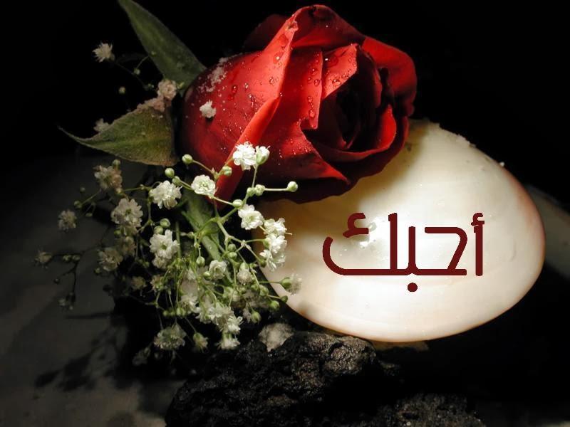 صور حب ورومانسية وعشق صور للمخطوبين والمتزوجين والمرتبطين بالحب (2)