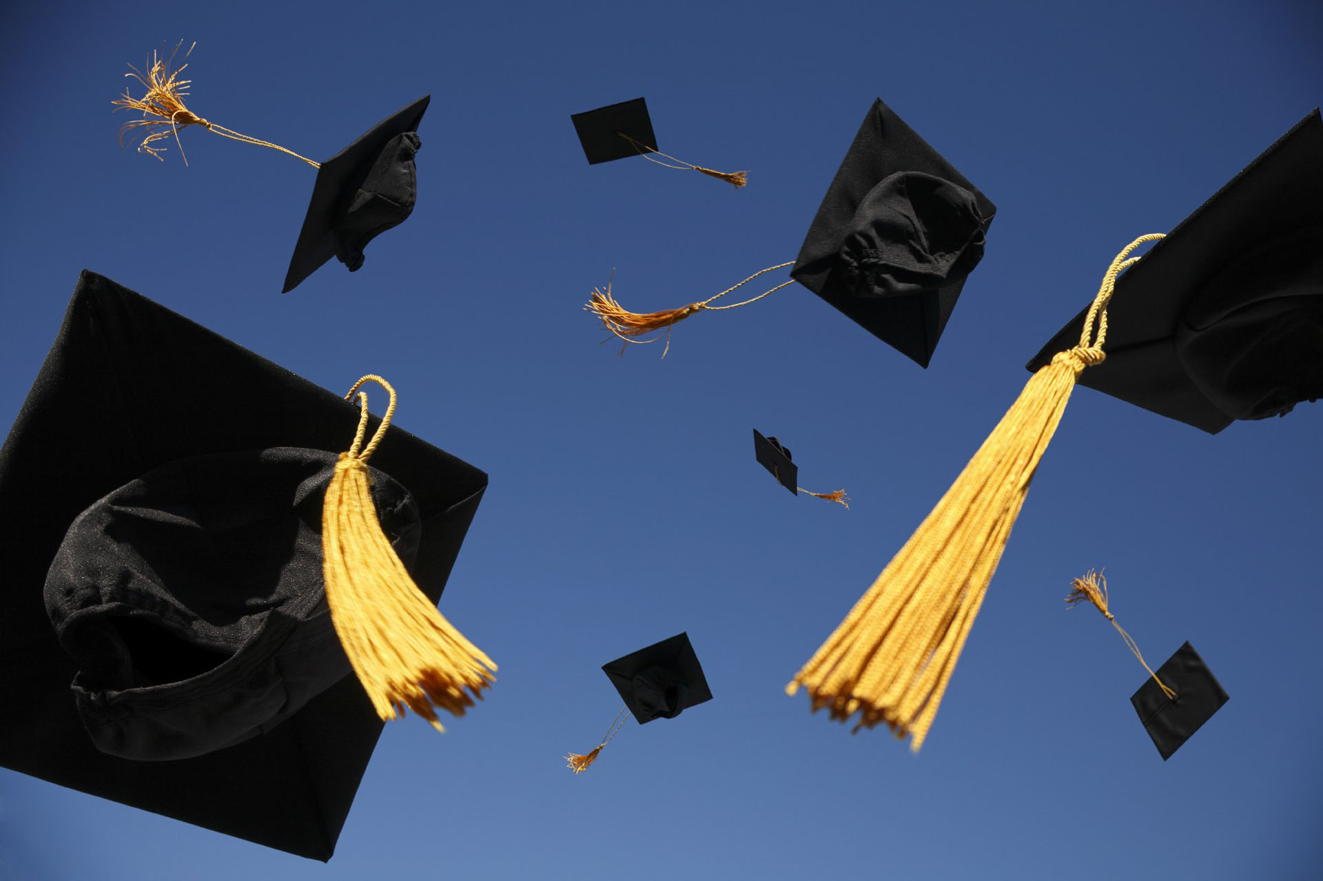 صور التهنئة بالتخرج من الكلية  (12)