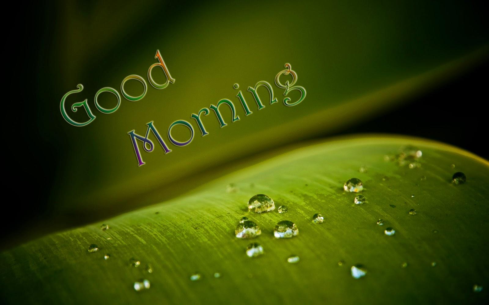 صور صباح الخير وصور للصباح (26)