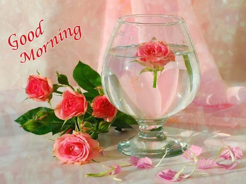 صور صباح الخير وصور للصباح (35)