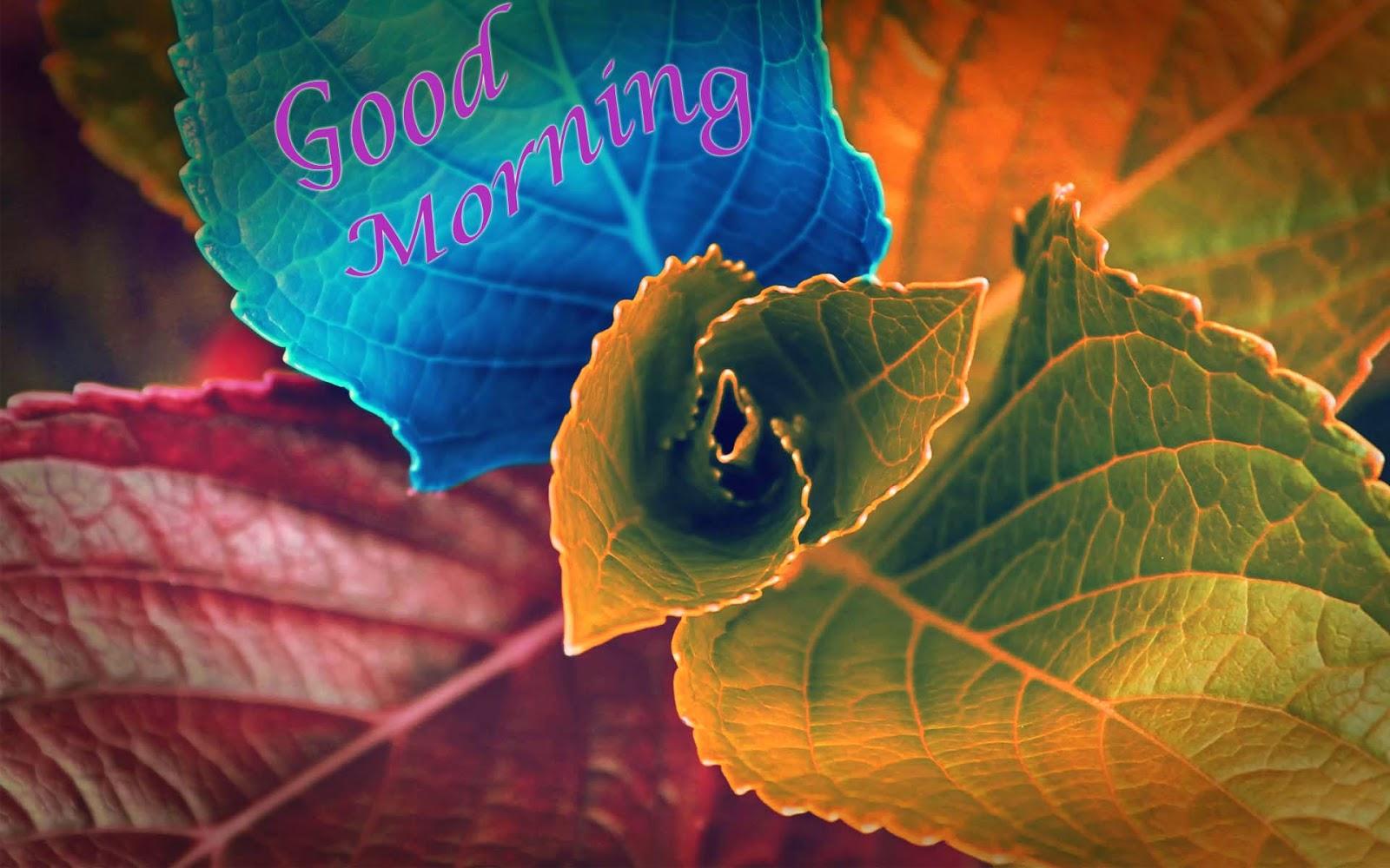 صور صباح الخير وصور للصباح (51)