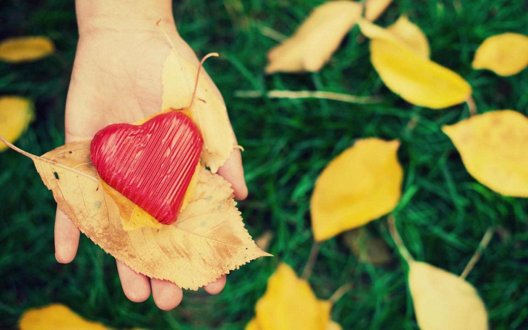 صور قلوب وحب ورومانسية وصورة قلب HD  (19)