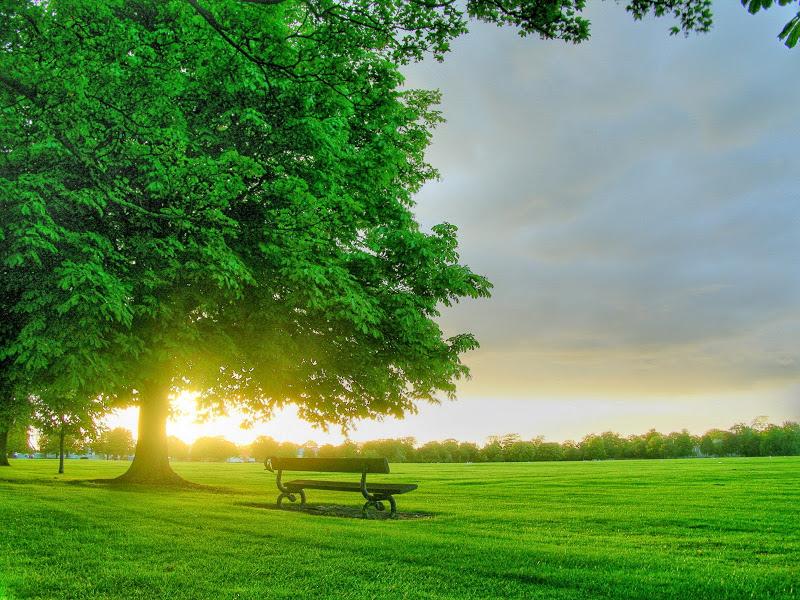 صور صباح الخير Good Morning صور مكتوب عليها صباح الخير (12)