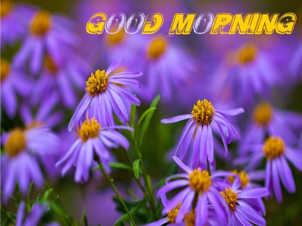 صور صباح الخير Good Morning صور مكتوب عليها صباح الخير (23)