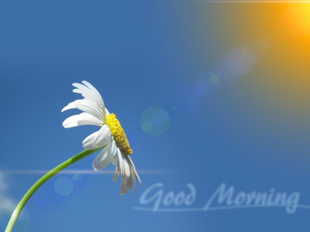 صور صباح الخير Good Morning صور مكتوب عليها صباح الخير (5)