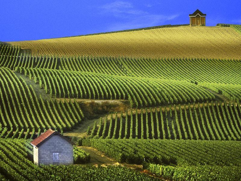 صور من فرنسا احلي صور للسياحة والاماكن السياحية في فرنسا (28)
