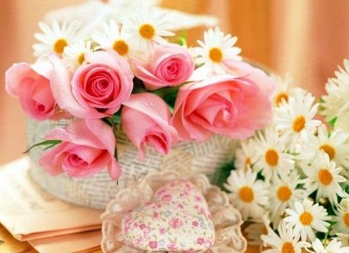 صور ورود جميلة اجمل صور الورد والازهار بجودة HD (25)