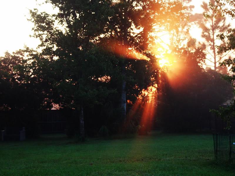 صور شروق الشمس احلي خلفيات للشروق بجودة HD (12)