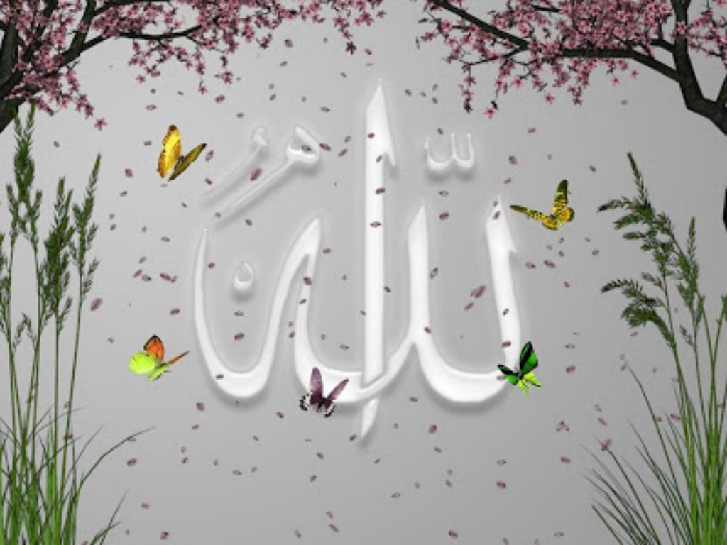 صور اسلامية ودينية واسلامية للواتس اب 2016 (31)