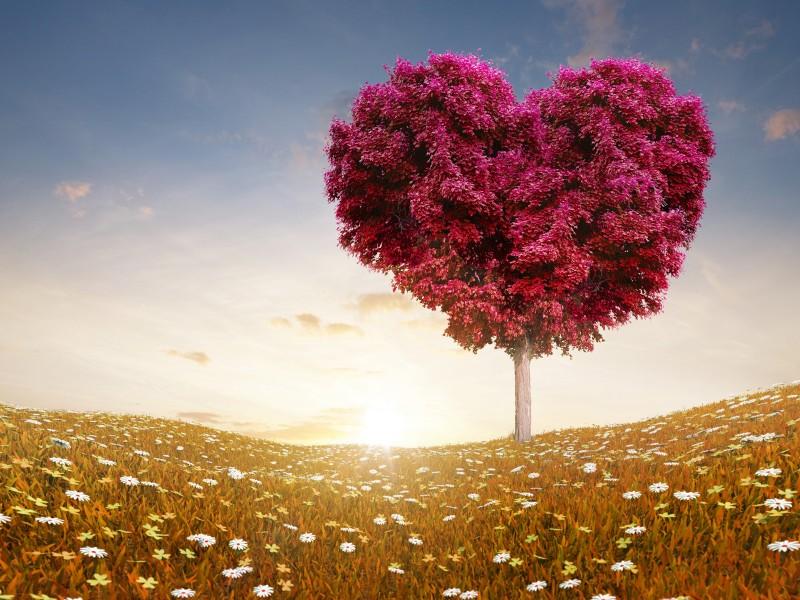 صور الفلانتين 2016 صور قلوب وحب للفلانتين داي (33)