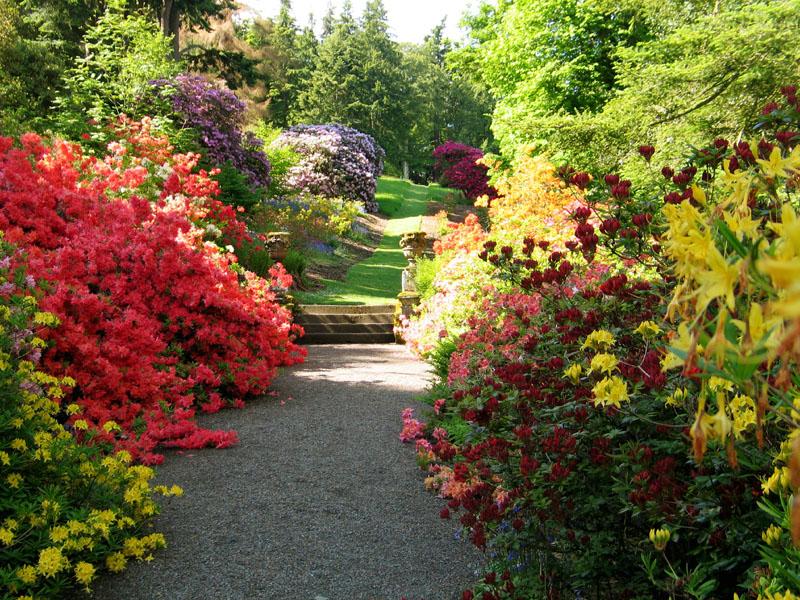 صور حدائق فلل وقصور اجمل مناظر حدائق (1)
