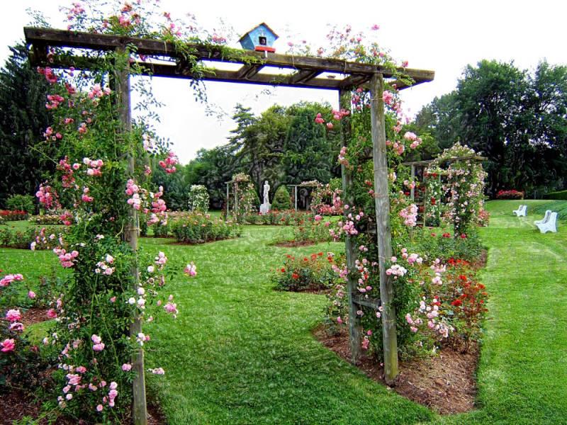 صور حدائق فلل وقصور اجمل مناظر حدائق (16)