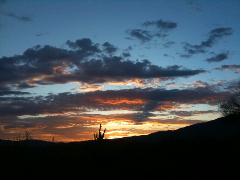 Sunrise at Saguaro NP