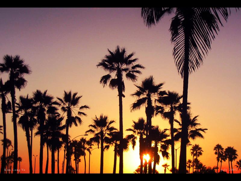 صور عن غروب الشمس اجمل خلفيات الغروب (9)