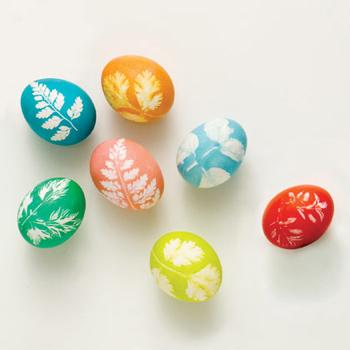 صور بيض ملون لشم النسيم طريقة تلوين البيض (21)