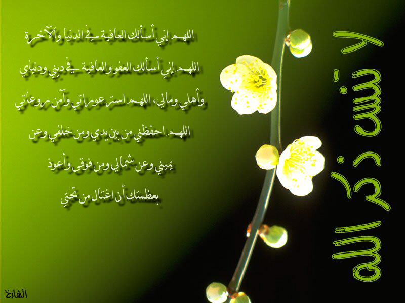 صور خلفيات اسلامية جميلة وجديدة تحميل خلفيات اسلامية (2)