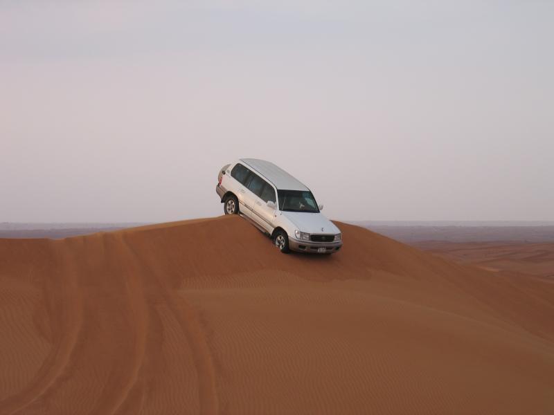صور من دبي مناظر طبيعية خلابة في دبي (11)