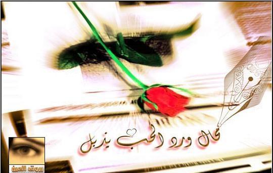 صور حب ورومانسية وعشق صور للمخطوبين والمتزوجين والمرتبطين بالحب (49)