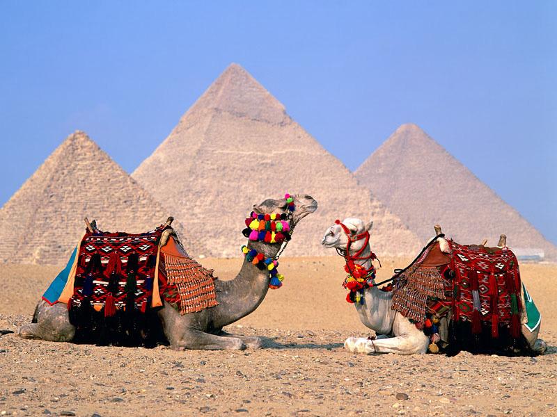 صور اهرامات الجيزة مصر (29)