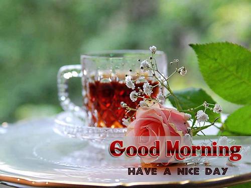 صور صباح الخير وصور للصباح (29)