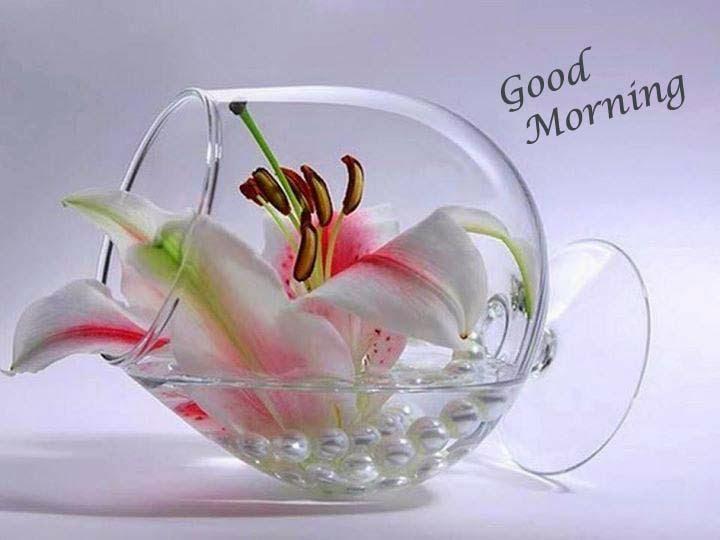 صور صباح الخير وصور للصباح (61)