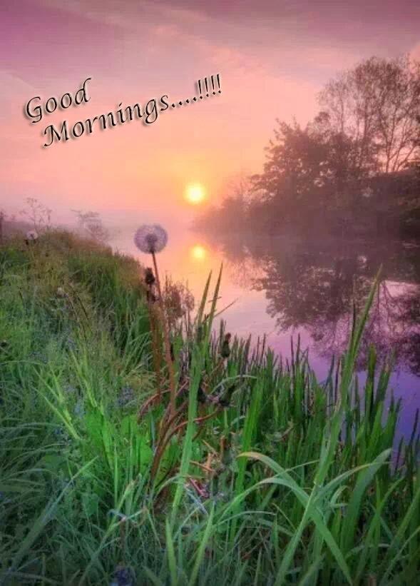 صور صباح الخير وصور للصباح (9)