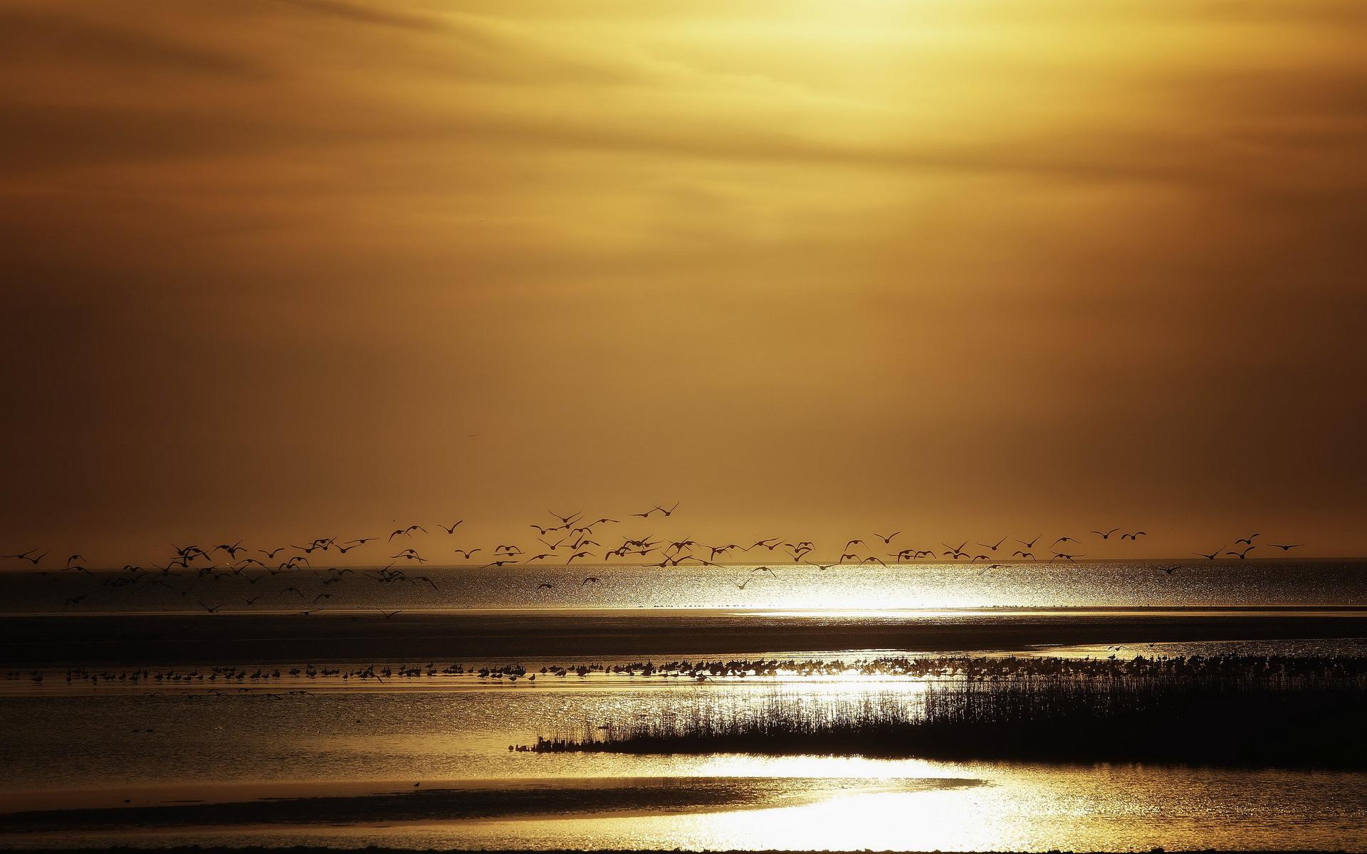 صور بحر خلفيات البحار والمياة بجودة HD (39)