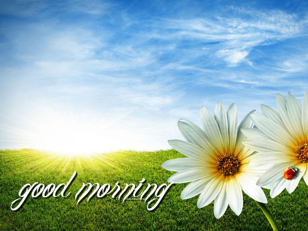 صور صباح الخير Good Morning صور مكتوب عليها صباح الخير (14)