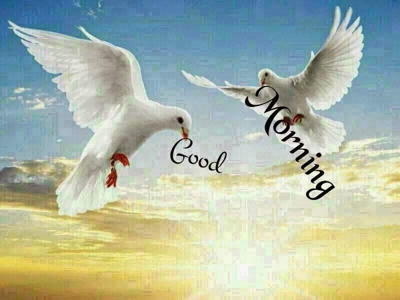 صور صباح الخير Good Morning صور مكتوب عليها صباح الخير (22)