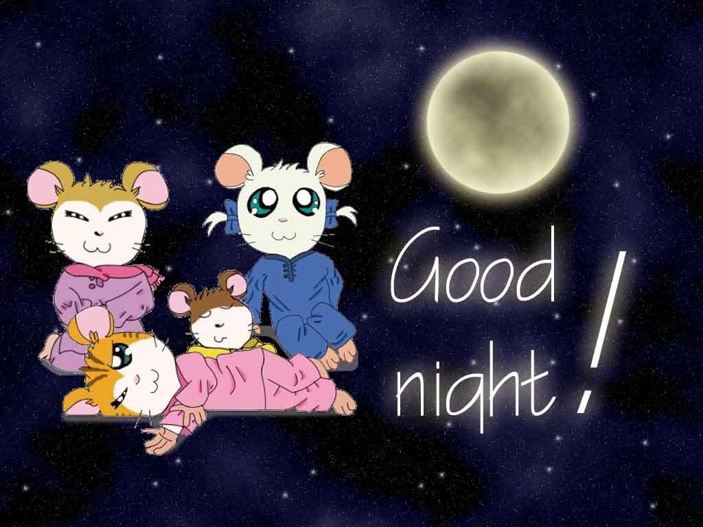 صور مساء الخير Good Night صور مكتوب عليها مساء الخير (10)