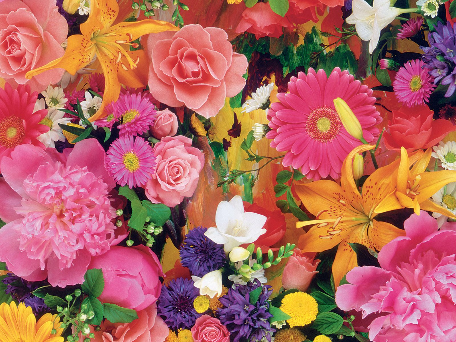 صور ورود جميلة اجمل صور الورد والازهار بجودة HD (44)