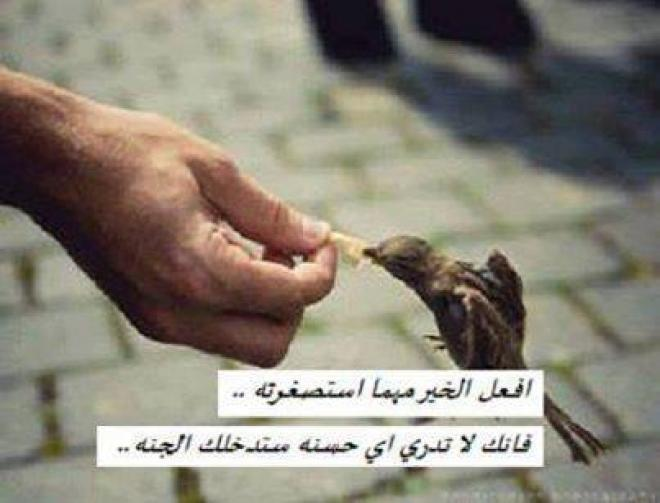 صور خلفيات دينية واسلامية جميلة ادعية اسلامية (12)