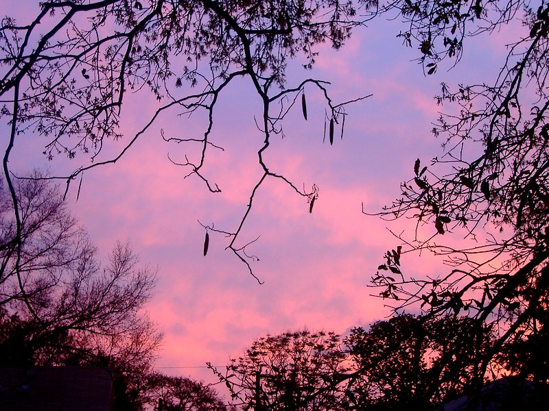 صور شروق الشمس احلي خلفيات للشروق بجودة HD (16)