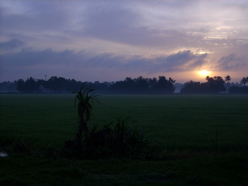 صور شروق الشمس احلي خلفيات للشروق بجودة HD (45)