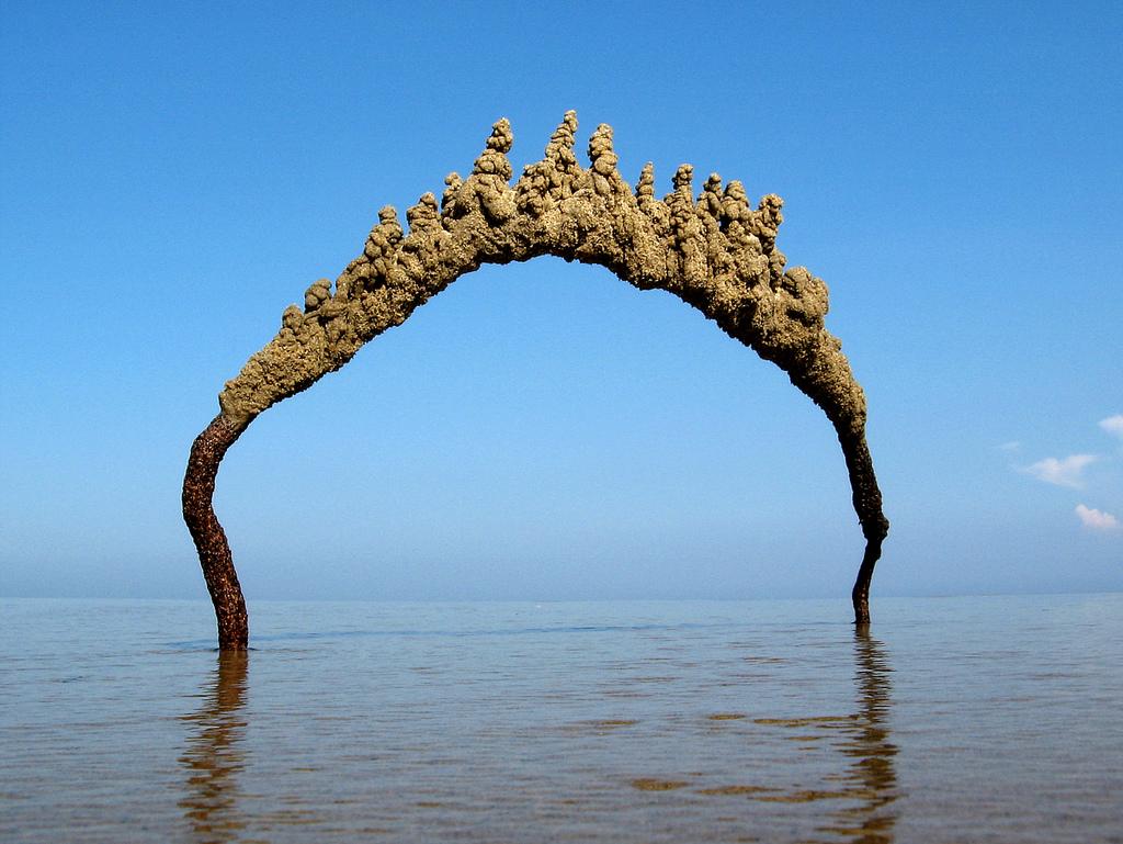خلفيات وصور بحار احلي صور عن البحر hd (15)