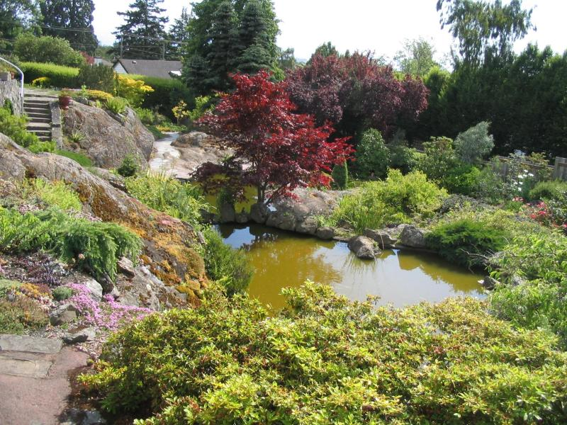صور حدائق فلل وقصور اجمل مناظر حدائق (15)
