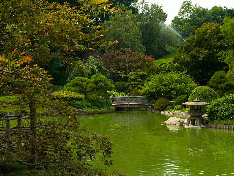 صور حدائق فلل وقصور اجمل مناظر حدائق (22)