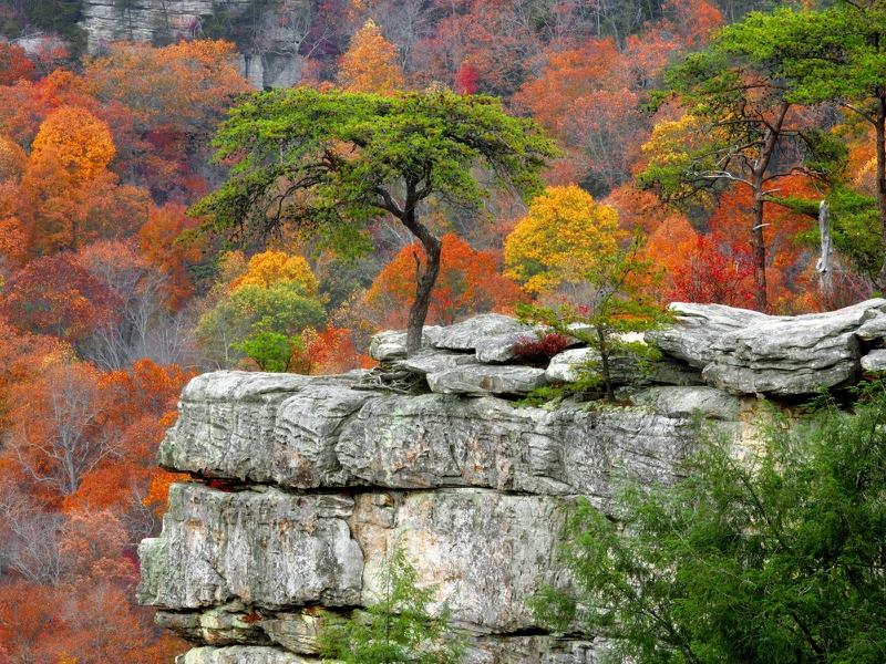 صور خلفيات جبال HD احلي صور الجبال (39)