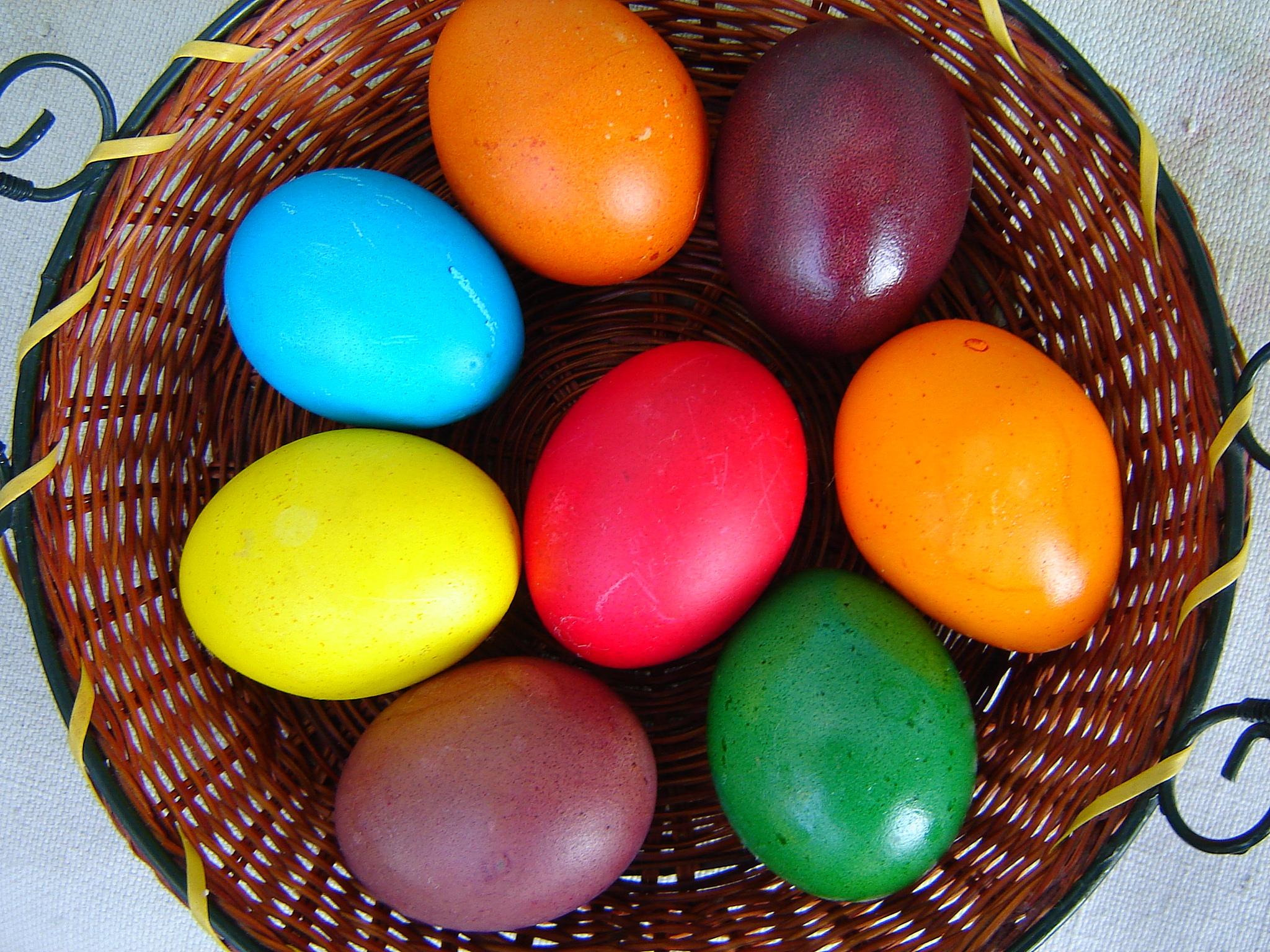 صور بيض ملون لشم النسيم طريقة تلوين البيض (2)
