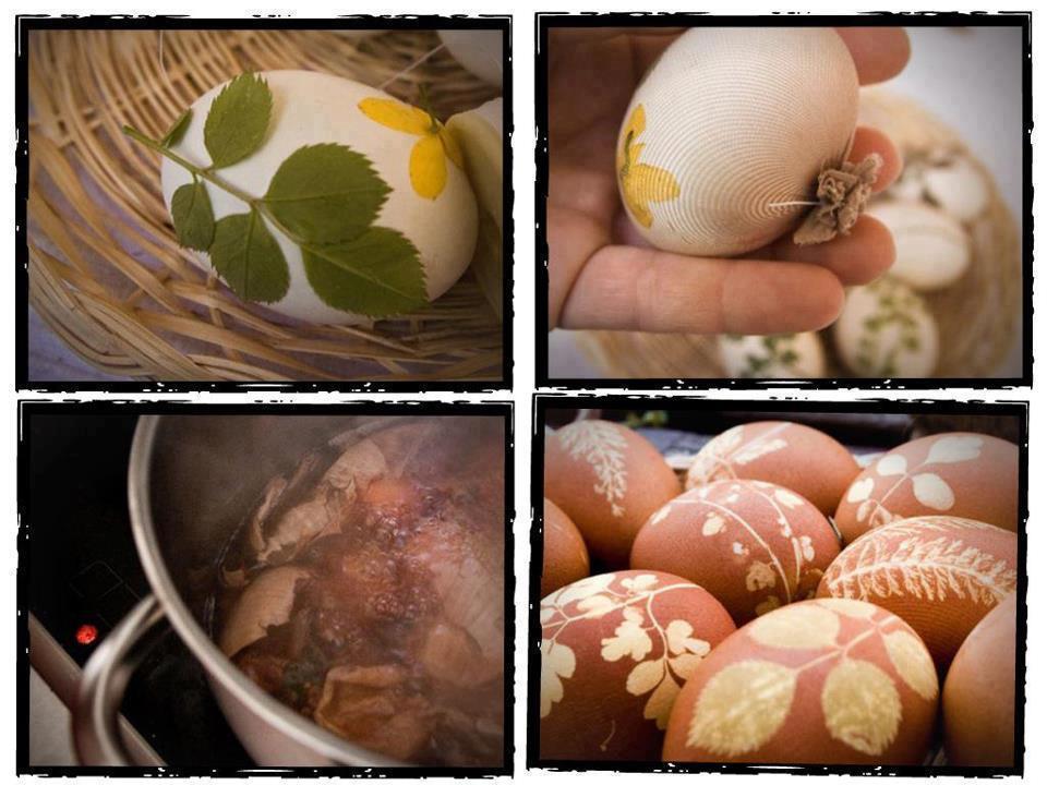 صور بيض ملون لشم النسيم طريقة تلوين البيض (22)