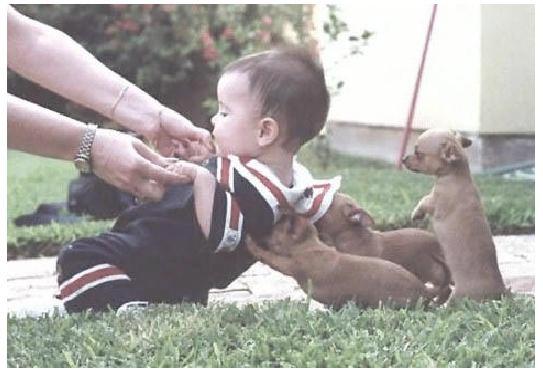 احلي صور اطفال مضحكة (4)