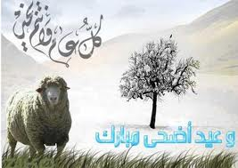 صور تهنئة بعيد الأضحي المبارك 2016 خروف العيد (18)