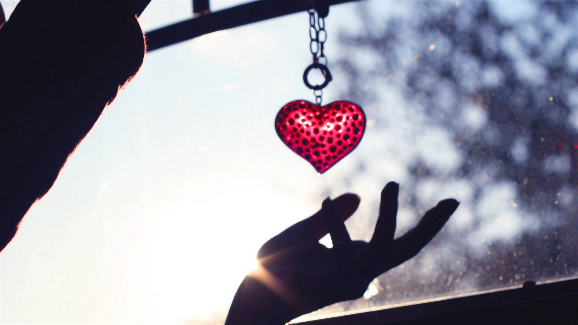 Valentines Day Pictures Hd