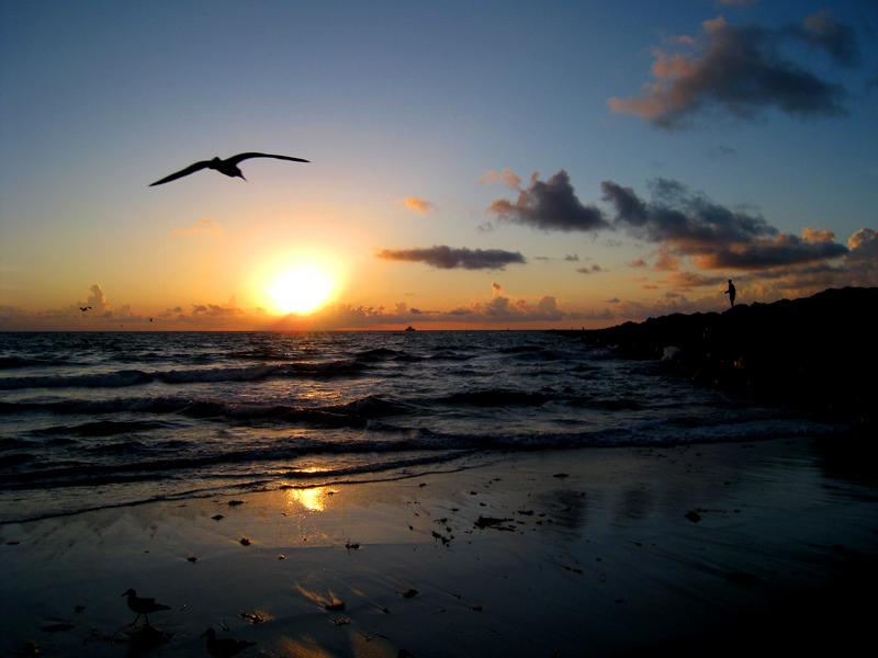 صور شروق الشمس رمزيات و خلفيات منظر شروق الشمس سوبر كايرو